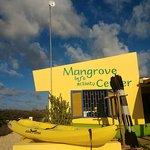 Photo of Mangrove Information Center Kayak & Snorkel Excursions
