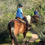 Photo of Western Destinations Canyon Creek Ranch - Tours