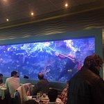 Aquarium with scuba diver cleaning it