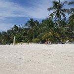 Foto de Malapascua Exotic Island Dive & Beach Resort