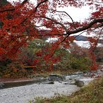 Photo of Mitake Valley