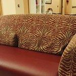 Photo de Hotel Arosa