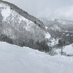 Snowy all day - great ski conditions
