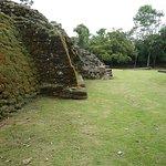 Jaguar temple side