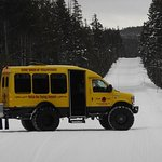 The best way to get around Yellowstone in the winter