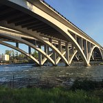 View of the I-5 freeway bridge (Springfield portion of the Willamette River bike path)