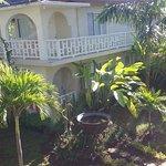 Photo de Coral Seas Garden