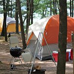 colorful displays of cool tents