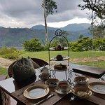 Photo de Ceylon Tea Trails