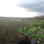 Photo de Green Cay Nature Center and Wetlands