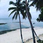 Anda White Beach Resort Photo