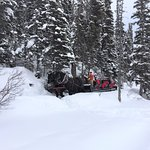 Deer Lodge - just steps from Lake Louise (the horse-drawn sleigh)