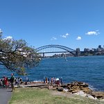 View from Mrs Macquarie's chair