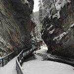 Discover Banff Tours Foto