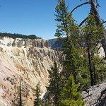 Foto de Gran Cañón de Yellowstone