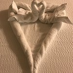 I am so blessed to find new towel sculptures on my bed!  Luz has an amazing talent!  I wish I wo