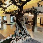 Foto de Grand Hotel dei Congressi Assisi