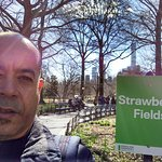 Foto di Strawberry Fields