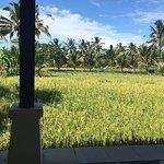 Photo of Nandini Bali Jungle Resort & Spa
