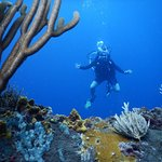 Photo of Richmond Vale Diving & Hiking Centre