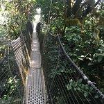 Obudu Mountain Resort Photo