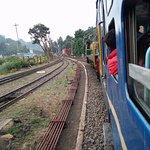 Photo de Nilgiri Mountain Railway