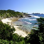 Middle Beach 5 mins walk incredible beachcombing, fishing, surf and snorkelling