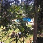 Photo of Alona Golden Palm Resort