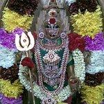 Bhadra Kali Temple