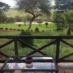 Photo de Olea Africana Lodge