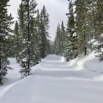Riding snowmobiles outside Yellowstone Park on one of the many trails...fabulous!!