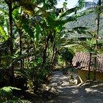 Foto de Terras Altas De Paraty