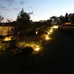 The gardens at night from our first floor premium room