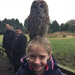 Owl on Head!!