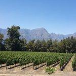 The Stellenbosch mountains