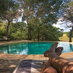 andBeyond Phinda Forest Lodge Foto