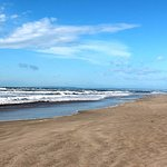 la plage de l'espiguette en hiver