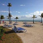 Islander Resort, a Guy Harvey Outpost Photo