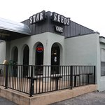 Star Seeds Cafe a true Austin hangout where musicians go after they play late into the night.