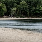 Walden Pond State Reservation Foto