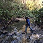Stream found on Ladder Trail
