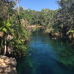 Photo de Cenote Crystal