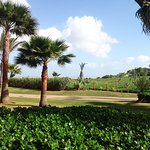 Photo of Mazagan Beach & Golf Resort