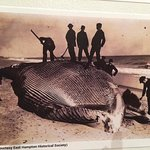 Great detail of the history of whaling on Long Island