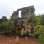 Photo of Dead City of Serjilla