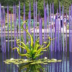 Chihuly Glass Water Forest at the DBG