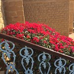 Photo de Hotel Rawalkot Jaisalmer