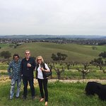 Guyomar Vineyards with Ishka.