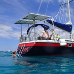Snorkeling and sailing on the lark