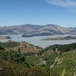 Lyttelton Harbour from the Crater Rim Walkway